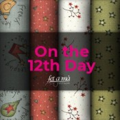 On the 12th Day by Anni Downs